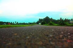 Andai Jadi Semut (muhajier) Tags: kampung sawah alam perkampungan