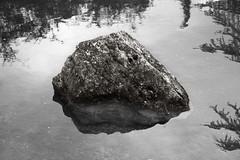 Rock - Roca (MartinBenito) Tags: blackandwhite blancoynegro water rock stone agua quiet tranquility biosphere calm zen reflejo duotone meditation reflexion calma minimalist roca piedra tranquilidad duotono medit