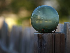 Kept on a pedestal (Shelby's Trail) Tags: wood glass fence ball dof post bokeh mybackyard hff fencedfriday