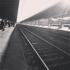 Il Mondo  un libro, e coloro che non viaggiano leggono solo una pagina. (Cristina Birri) Tags: winter blackandwhite bw blackwhite bn railwaystation mestre inverno stazione bianconero biancoenero treni veneto rotaie
