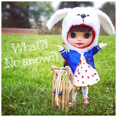 What?! No snow?!  Tiger Lily has been waiting for me to finish customising her, so when I finally did, she rushed out with the sledge I bought in December..Sorry it took me so long T.L.