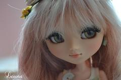Elfine (~Louna~) Tags: fairy pullip custom fc custo obitsu nereapozo fullcustom fullcusto