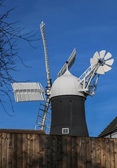 Holgate Windmill from West Bank Park (5)