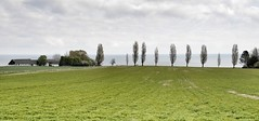 bei Melsted/Bornholm (dirklie65) Tags: green field landscape feld grn landschaft dnemark ostsee bornholm melsted