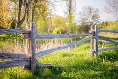 Wooden Fence (dan sedran) Tags: nature rural sony rustic naturallight naturalbeauty goldenhour goldenlight sonyalpha sonya7