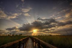 Oasi Lago di massaciuccoli III (Guido Pezzatini) Tags: travel sunset sky italy sun lake clouds landscape lago italia nuvole cielo swamp tuscany toscana sole palude paesaggio oasi 5dmarkiii