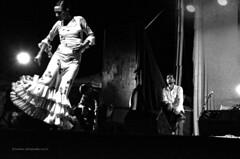 Flamenco Espectaculos, Plaza Nueva, (FFMENDOZA -AUSTRALIA) Tags: nightphotography feminine musica passion festivities baile emotive flamenco cante mojcar almeriaspain folktraditions emotional plazanuevamojacar documentalesfotograficos traditionsdeespagne anabelvelosodancecompany ffmendozaphotography musicacante