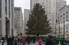 rockefeller tree (arcibald) Tags: christmas newyork tree manhattan rockefeller
