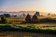 Village Life (Maddog Murph) Tags: nepal mist field fog rural sunrise landscape photography dawn town haze glow farm ngc harvest grow huts hut western fields illuminate villagers bardia