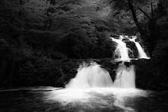 slow time (Passe-) Tags: bw white lake black water monochrome mono blackwhite waterfall skne long exposure sweden smooth down chrome sverige rushing vattenfall hallamlla