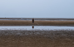 'An other place' II (barfi*) Tags: art beach crosby anthonygormly