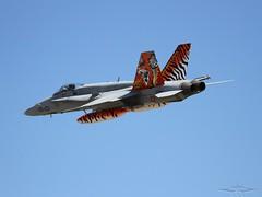 IMG_6701 (fab spotter) Tags: marine 2000 tiger jet f16 mirage hawkeye hornet c17 e3 f18 gazelle meet typhoon armee avions aguila otan saragosse rafale gripen rhc exterieur mi24 lutwaffe hlicoptres ntm2016