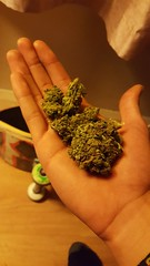 Smoke weed everyday (a.jaidris) Tags: york follow bobmarley marihuana picoftheday smokeweed weedeveryday