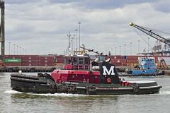 r_160519331_whcedu_a (Mitch Waxman) Tags: newyorkcity newyork tugboat moran workingharborcommittee educationtour portelizabethnewark