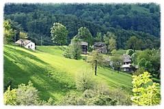 Serenity (only_sepp) Tags: verde primavera natura paesaggi montagna viu coldellys allnaturesparadise