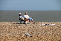 Enjoying the sun (Ann of Bere) Tags: old people beach suffolk seagull sunbathing