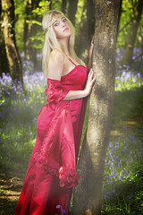 red tree hugger (BarryKelly) Tags: blue red tree girl model dress bell head band silk blonde satin