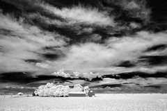 pastures of plenty - Infrared (eDDie_TK) Tags: blackandwhite bw rural ir colorado weld farming barns co infrared farms redbarns rurallife ruralliving weldcounty weldcountyco
