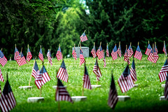 independence day.    happy 4th! (-gregg-) Tags: flags independence day trees gettysburg pa proud forgotten america
