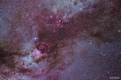 Cygnus Region (AstroGuiGeek) Tags: nightphotography light sky night skyscape stars cluster astro ciel nebula astrophotography astronomy milky nuit starry skyatnight cygne astrophoto starrynight t3i milkyway astronomie deneb cygnus northamericanebula deepsky voielacte ngc7000 600d astrophotographie canonphotography nbuleuse amas starrysky sadir cieltoil cielprofond astrometrydotnet:status=solved cieldenuit eos600d canoneos600d rebelt3i bbcskyatnight astroguigeek franceastronomie astro2016 astrometrydotnet:id=nova1587865