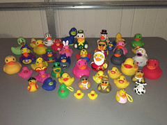 My Rubber Duckie Collection (peachy92) Tags: chathamcountyga chatham chathamcounty iphone savannah chathamcountygeorgia ducks duck rubberducks rubberduck duckie ducky rubberducky rubberduckies rubberduckie ga georgia us usa unitedstates unitedstatesofamerica 2016 home moblog moblogging cameraplus iphone6 savannahgeorgia savannahga iphoneography iphonegraphy