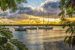 Sunset with boats (rqserra) Tags: sunset pordosol brazil sun praia beach nature brasil clouds landscape soleil zonsondergang agua tramonto sonnenuntergang barcos natureza coucher paisagem prdosol nuvens rvore reflexos entardecer waterscape solnedgng rqserra