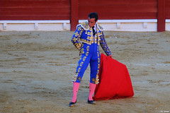 El Matador de Toros (Fotomondeo) Tags: espaa valencia spain bull alicante toros bullfight toro bullring matador torero plazadetoros alacant corridadetoros fogueres hogueras hoguerasdesanjuan elfandi fujifilmxm1
