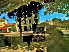 Spiegel-Collage (web.werkraum) Tags: street light urban color green collage germany deutschland licht europa sommer fenster ks himmel unterwegs international grn farbe reflexion spiegelung annotation nahaufnahme association jetzt 2016 oranienburg bernauerstr wegzeichen omot vertrautheit dasdasein bildfindung berlinerknstlerin tagesnotiz verortung webwerkraum karinsakrowski flickrnova collageconcept sommergast sommerlichesvongestern