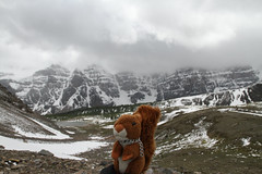 Larch Valley (MetallYZA) Tags: canada mountains rockies squirrel hiking rando mascot alberta stuffedanimal banff lakelouise rocheuses montagnes peluche cureuil randonne mascotte 2016 ecureuil