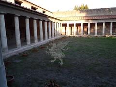 Stabia_Villa di Poppea_39
