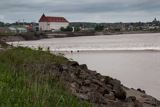 Surfers riding the Tidal Bore on Petitcodiac River (known informally as the Chocolate River), Moncton, NB