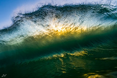 Bloom (David Field (Sydney)) Tags: ocean travel sea orange sun seascape green beach nature sport yellow backlight sunrise canon surf glow underwater tube barrel sydney wave australia spray clean clear nsw bloom northernbeaches waveart