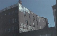 F827 (hronirheila) Tags: nyc ny newyork brooklyn 35mm nikon fuji grain natura williamsburg fujifilm grainy nikonf70 fujinatura1600 fujinatura epsonperfectionv550