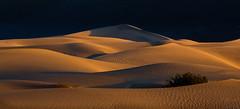 Mesquite Sand Dunes (Daniel.Peter) Tags: usa dunes deathvalley dnen mesquitesanddunes dpe3x