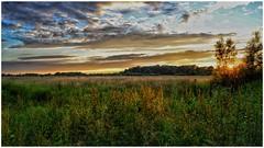 174/366 (jim-green777) Tags: uk britain england 2016 june sunset derbyshire derby willingtonnaturereserve landscape fx fullframe nikond610