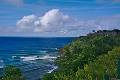 DSC05118 (deerhake.11) Tags: kauai