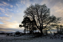 365A5019 (Nazgul 9) Tags: winter snow wales landscape south brecon beacons