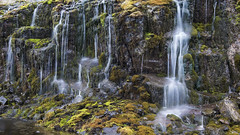 in the Kingdom of nymphs and naiads - HTT! (lunaryuna) Tags: mountain water landscape iceland flora colours rockface textures waterfalls lunaryuna lichens microcosmos mosses westfjords naturaltextures northwesticeland texturaltuesday