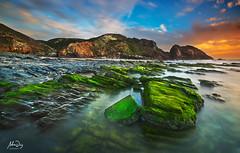 Colour festival (alonsodr) Tags: beach portugal seascapes sony playa filter alpha alonso aljezur graduated marinas carlzeiss filtro degradado costavicentina nd8 alonsodr alpha99 a99 gnd8 ltytr1 alonsodaz cz1635mm