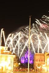 And All Our Wishes will Come True (MediumHero6) Tags: orlando mine florida parks disney wishes wdw waltdisneyworld mk magickingdom cinderellascastle disneyparks