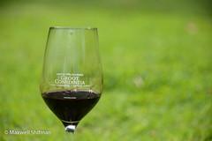 Groot Constantia wine glass