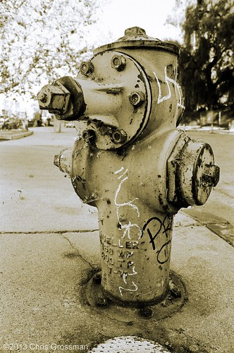 Mueller 150WP Wet Barrel Fire Hydrant - Nikon N55 - AF Nikkor 28-80mm F/3.3-5.8 G  - TRI-X 400