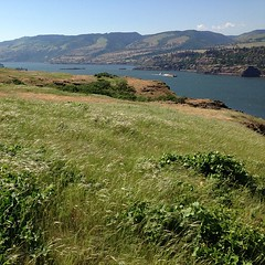 """Can you feel the wind blow? #columbiarivergorge • <a style=""""font-size:0.8em;"""" href=""""https://www.flickr.com/photos/61640076@N04/8727146641/"""" target=""""_blank"""">View on Flickr</a>"""