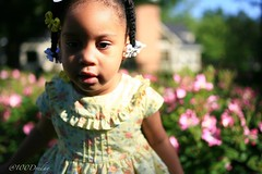 Mother's Day Shoot! (100Dreday) Tags: atlanta light portrait art glass beautiful beauty kids zeiss canon georgia photography prime dof bokeh naturallight wideangle depthoffield carl littlegirl nophotoshop jpeg mothersday magichour goldenhour littleones optics 2yearold distagon carlzeiss primelens 1dmarkiin sooc wirelessupload childrenphotography bokehlicious 35mm20 bokehoftheday manualfocusonly eyeficard bokeholics 1dseries 13xcrop bokehlism movieglass 235zet