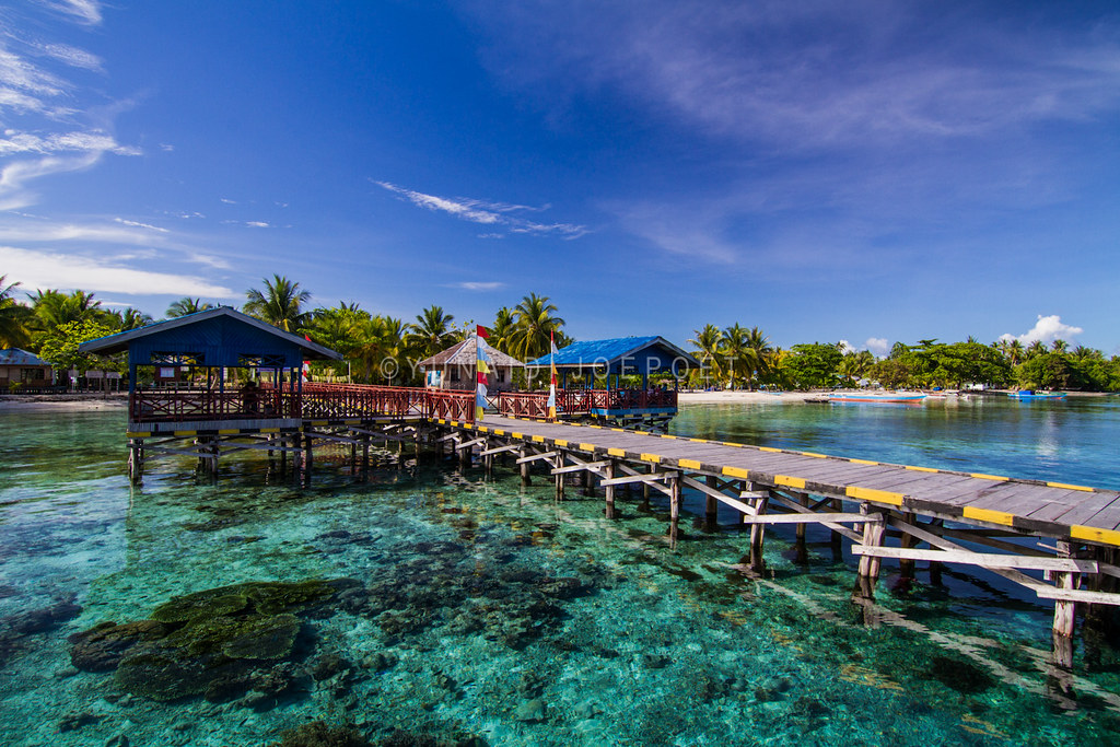 The world 39 s best photos of coconut and - Raja laut dive resort ...