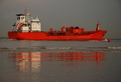 Bow Pilot (larry_antwerp) Tags: netherlands ship vessel schelde tanker schip rilland odfjell bowpilot 9164732