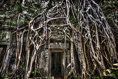 Where Nature and Man Colide (mephistofales) Tags: tree overgrown temple ancient ruins gate cambodia khmer roots buddhism angkorwat unescoworldheritagesite tombraider hdr highdynamicrange angkorthom photomatix siemreep nikond600 thaprom