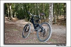 Scott Bike (peter pan 2011) Tags: bike canon scott eos reflex foto quarto 500 bosco fotocamera gargano foggia