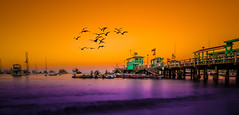 catalina island beach (fadisahouri) Tags: sunset beach landscape island photography catalina nikon d800 1424mm 1424mmf28 1424mm28