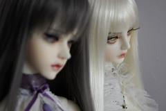 Sisters ( Atelier Kamena ) Tags: glass milk eyes doll dress gray royal super sd blond wig custom luts soom sg monthly kitsune breccia atelier kemper faceup sylia kamena clozel